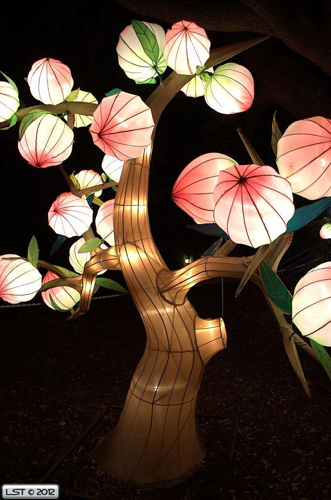 Lampion Karakter Pohon Kakau