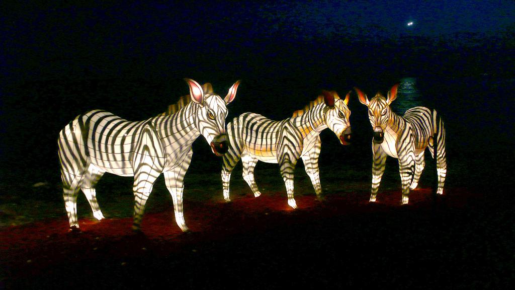 lampion Karakter Kuda Zebra